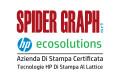 spider-graph-srl_logo
