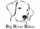 big-river-baloo_logo