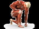 fisio-center-fisioterapista_logo
