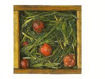 Tè verde Bancha alla Ciliegia