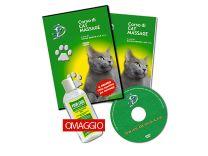 Corso di massaggi per Gatti