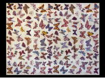 Tappeto Moderno Butterfly 200x150 cm