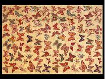 Tappeto Moderno Butterfly 120x180 cm