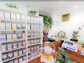 il-nostro-negozio-di-t-a-clusone-e-le-recensioni-dei-clienti