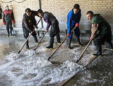 Lavaggio tappeti persiani centro lavaggio tappeti milano - Tappeti milano vendita ...