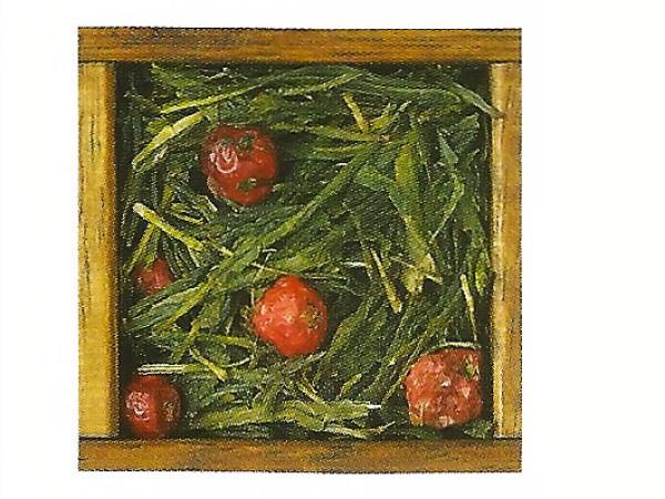 Tè verde Bancha alla Ciliegia immagine 0