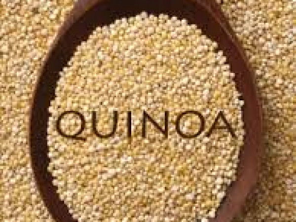 Muffin di Quinoa e Cioccolato fondente immagine 2