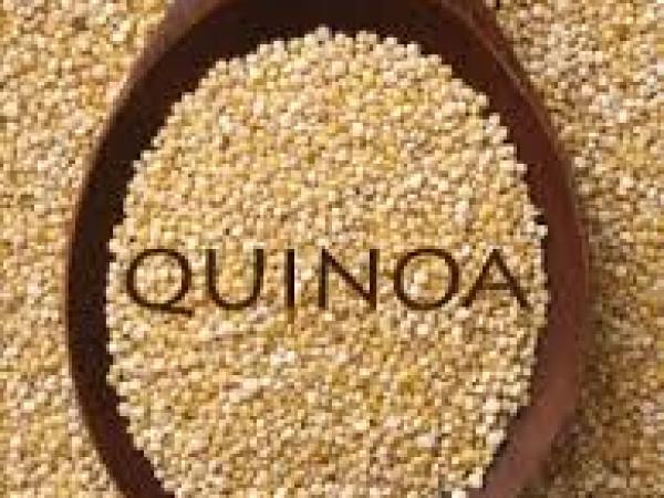 Torta di quinoa immagine 1
